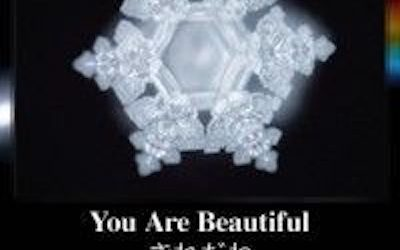 Dr Masaru Emoto – The Power of Words